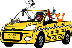 Taxi Animalier 77
