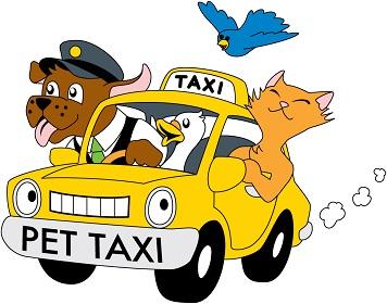 Taxi Animalier 78
